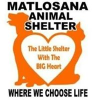 matlosana-animal-shelter